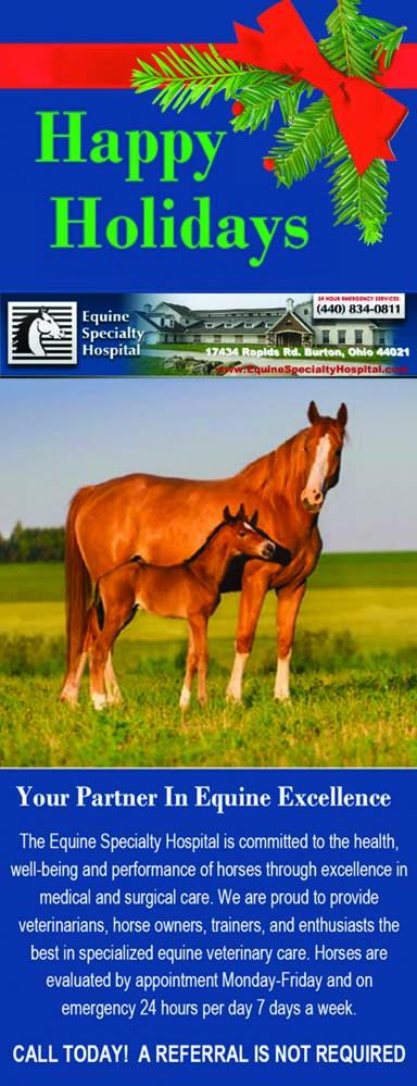 equine spec gbfa 17 8th v db