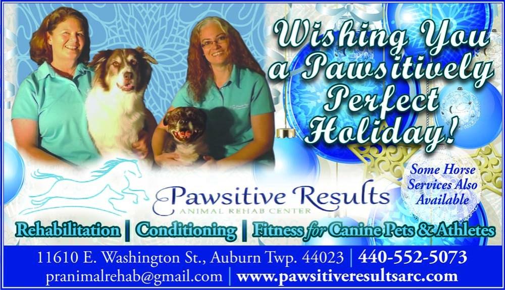 Pawsitive2GBFA17ee